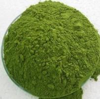 Moringa Oleifera Powder 3