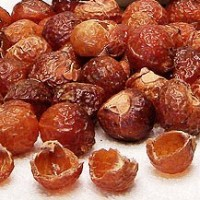 soap nuts canada