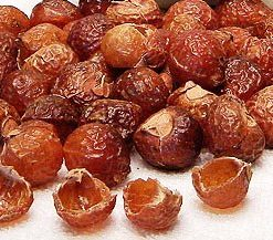 soap nuts_main alternative