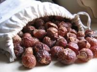 soapberry2