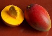 Mango Butter_mango_pit
