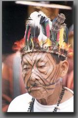 Cat's Claw Tribal 2