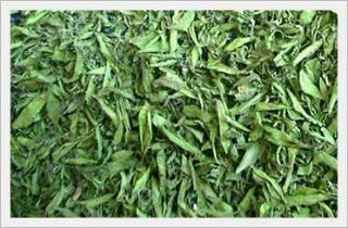 stevia leaf dried
