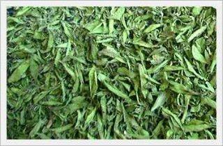 stevia_dried leaves
