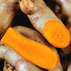 Essential oil Turmeric 1