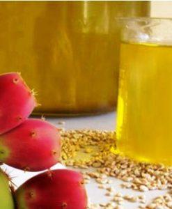prickly pear oil